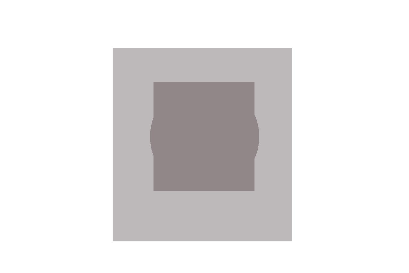 blokstudio_001_vw_logo