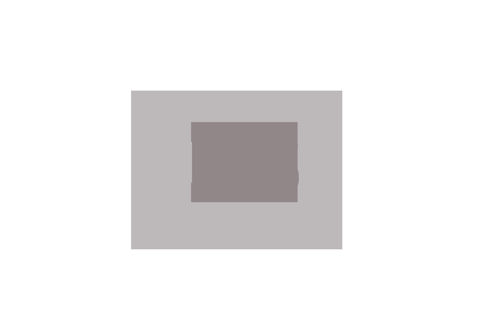 blokstudio_002_bugatti_logo