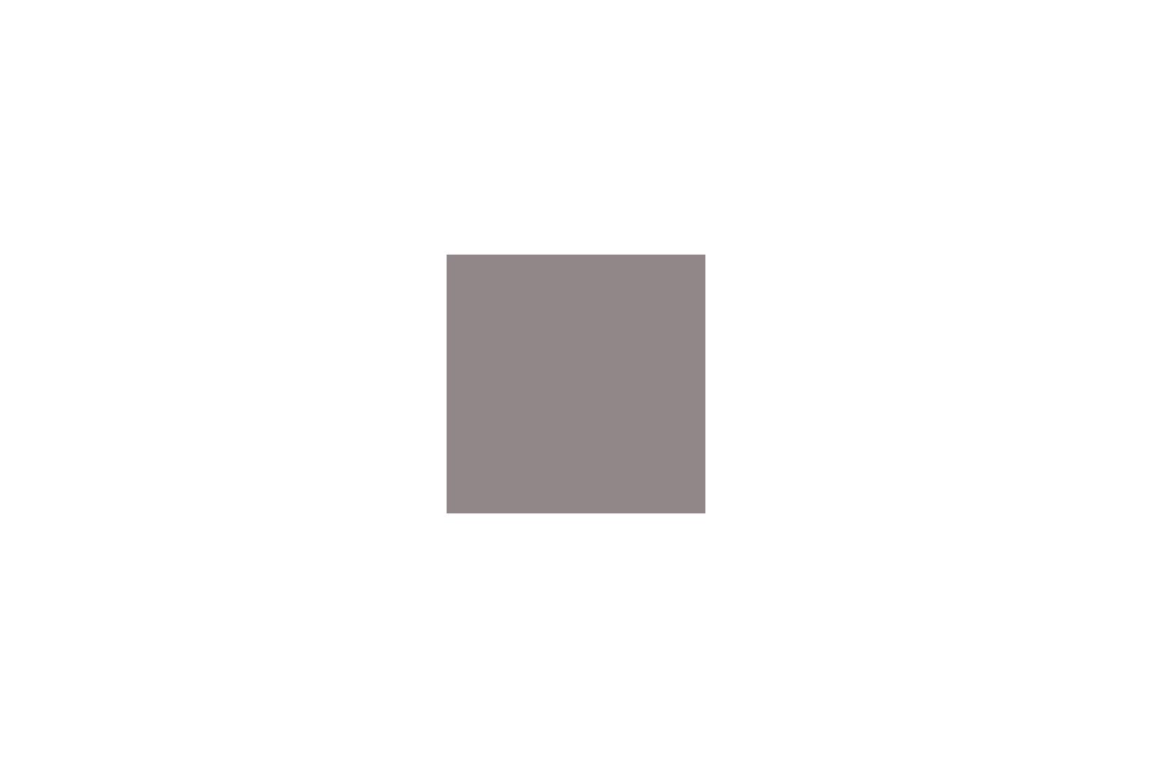 blokstudio_002_if_logo